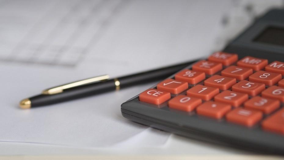 Воронежская область получит дотацию насбалансированность бюджета в нынешнем году