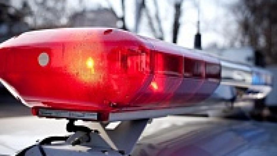 В ДТП в Воронежской области пострадали полицейские