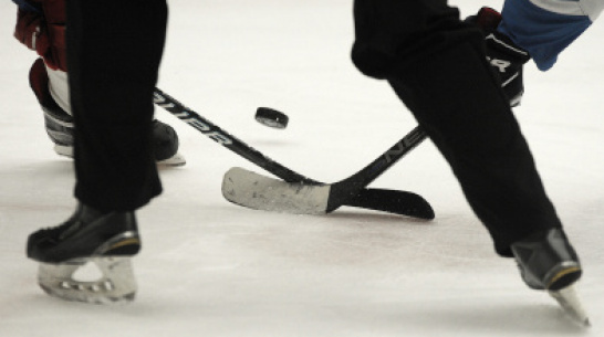 Хоккеисты «Россоши» сыграют с НХК из Новомосковска в полуфинале Кубка регионов