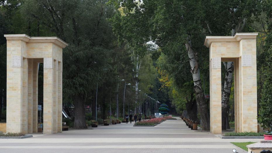 Разработкой концепции Центрального парка Воронежа займутся голландцы