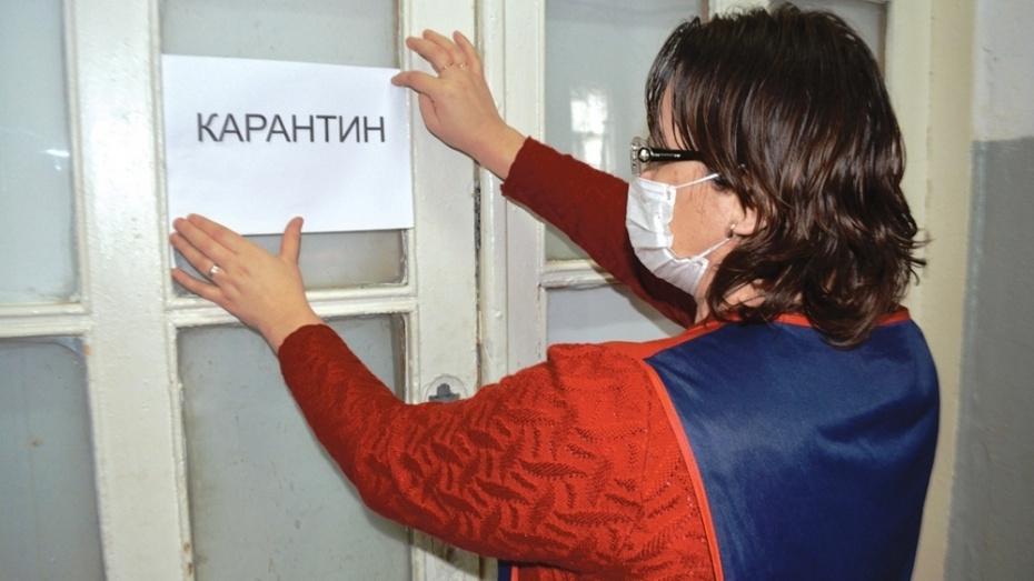 В Воронеже школа №25 закрылась на карантин по гриппу и ОРВИ
