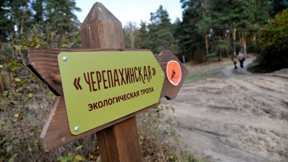 Малая Черепахинская тропа Воронежского заповедника открылась после реконструкции