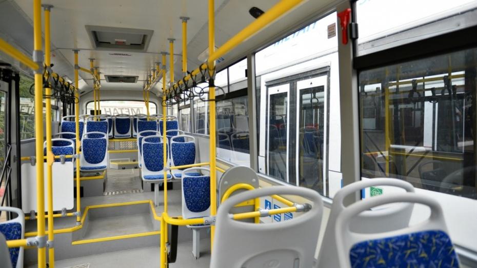 Воронежские частные перевозчики сменили 170 старых автобусов на новые