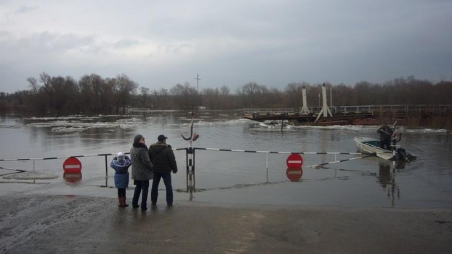 Разлившийся Дон изолировал несколько сел Острогожского района