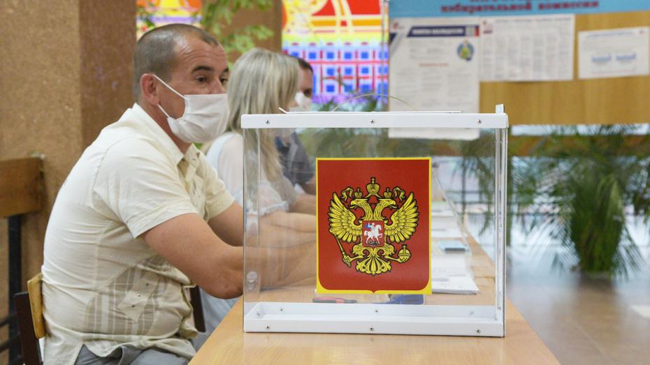 Воронежский облизбирком признал выборы состоявшимися