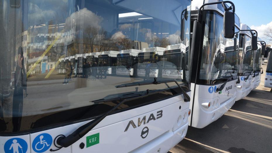 Белгородские власти объявили о закрытии автобусного сообщения с Воронежской областью