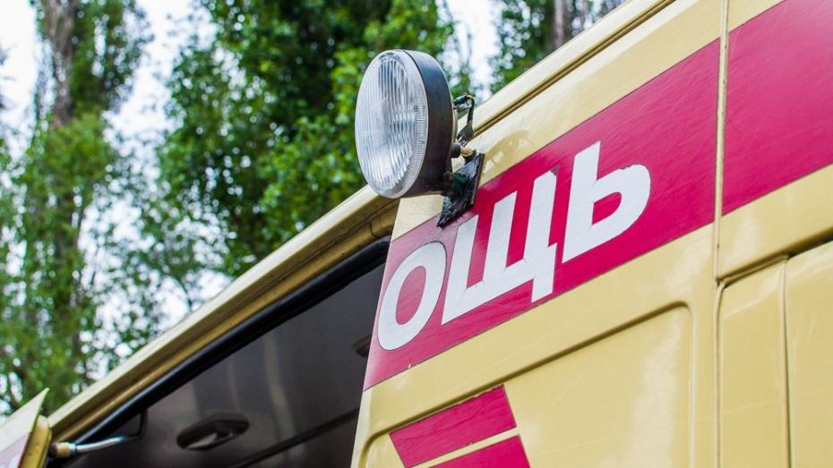 В Воронежской области 2 взрослых и 2 детей попали в больницу после массовой аварии