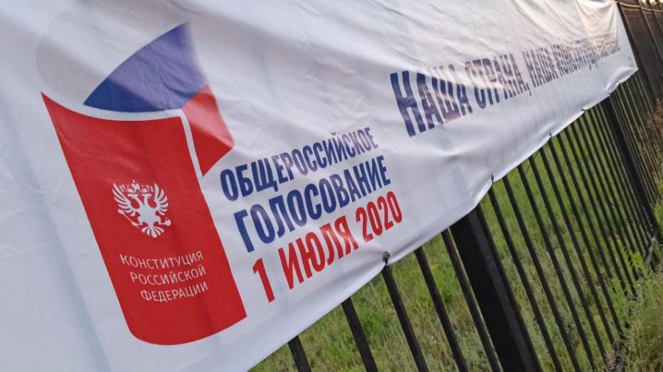 В Воронежской области проголосовали 47,91% избирателей