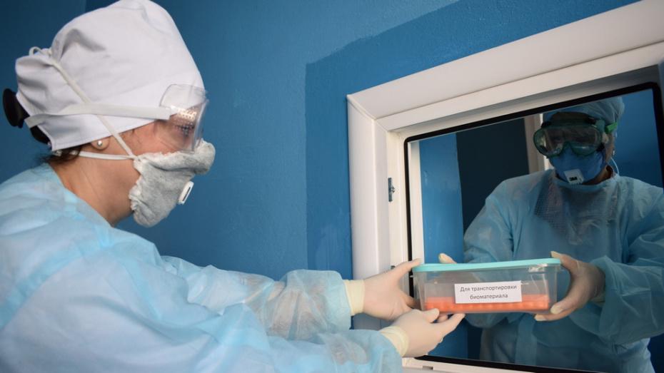 В Борисоглебске открыли лабораторию для тестирования на коронавирус