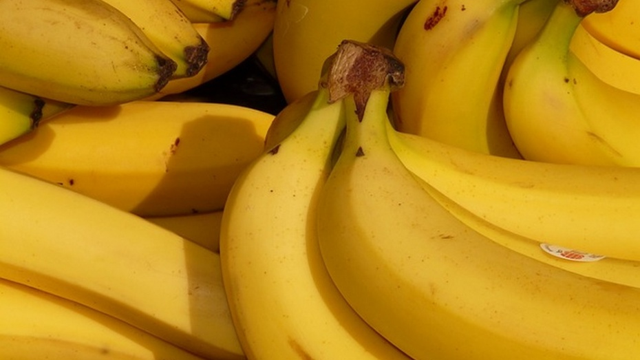 Немецкие супермаркеты по ошибке получили 400 кг кокаина вместо бананов