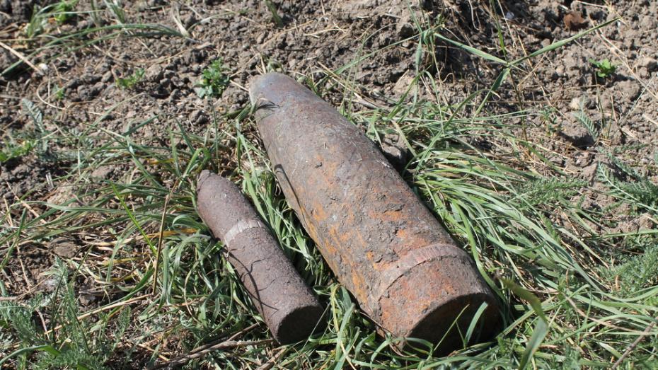 Под Воронежем на пастбище нашли 27 боеприпасов времен ВОВ