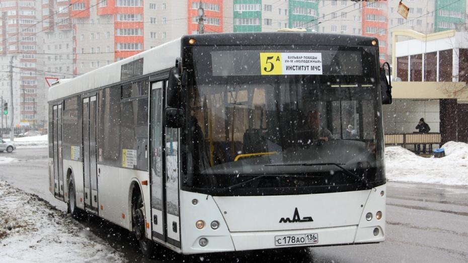 Новые модели МАЗ | 523x930