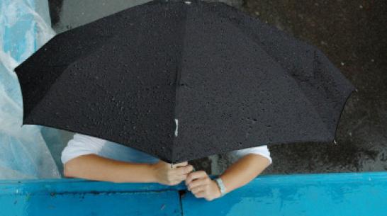 Воронежские синоптики: рабочая неделя будет дождливой