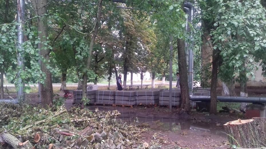 В Таловском районе на благоустройство парка потратят более 7 млн рублей