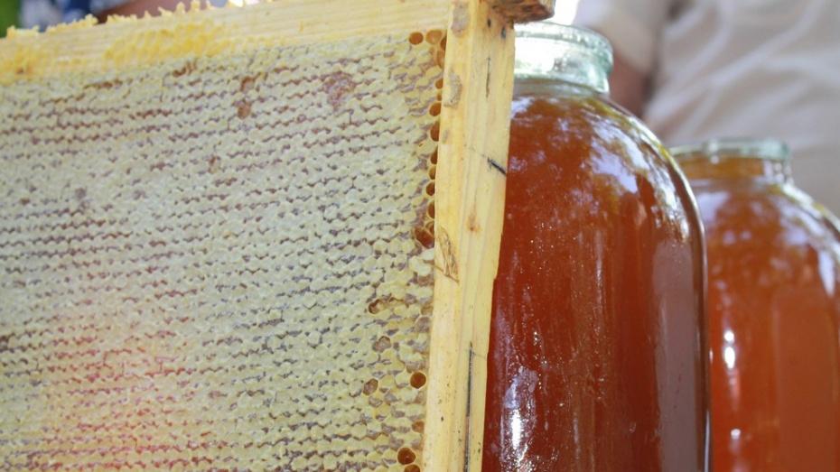 В Лисках Медовый Спас собрал пчеловодов со всего района