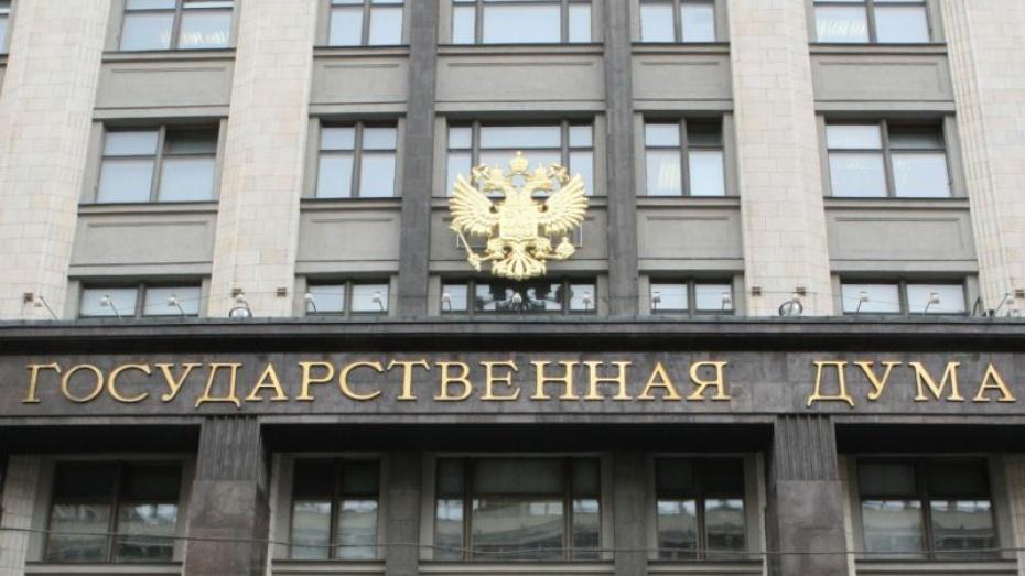 Девять депутатов Госдумы от Воронежской области за прошлый год заработали более 127 миллионов рублей