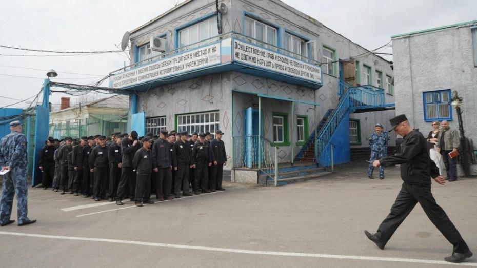 В Воронежской области на свободу по амнистии вышли 287 осужденных