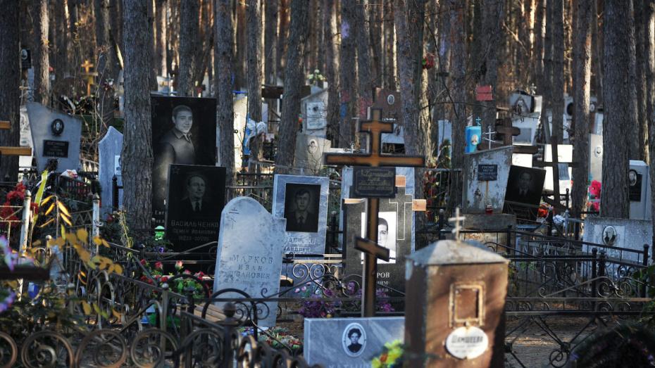 Воронежцев попросили отказаться от посещений кладбищ