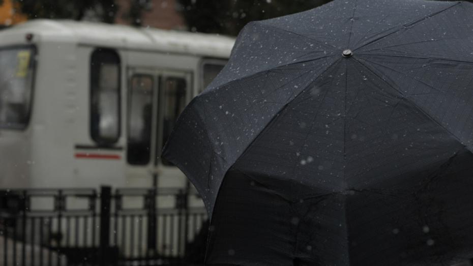 Синоптики пообещали осадки на длинных выходных февраля в Воронеже