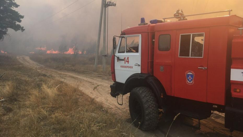 МЧС: на полигоне «Погоново» в Воронежской области 4-й час горит сухая трава