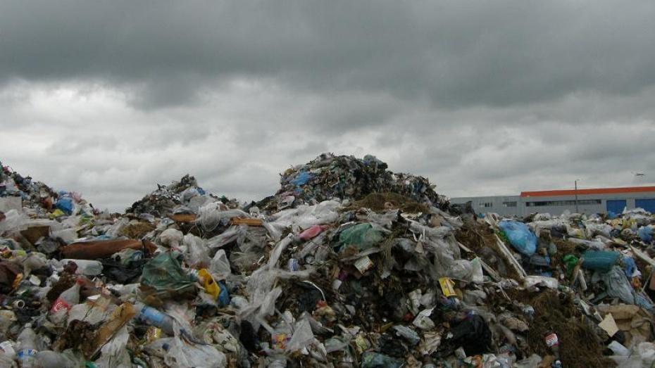 В Воронежской области на 13 законных полигонов для мусора приходится 400 нелегальных свалок