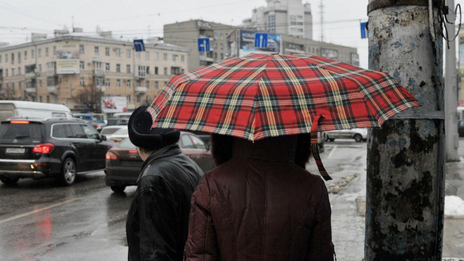 Синоптики спрогнозировали осадки в Воронеже к концу рабочей недели
