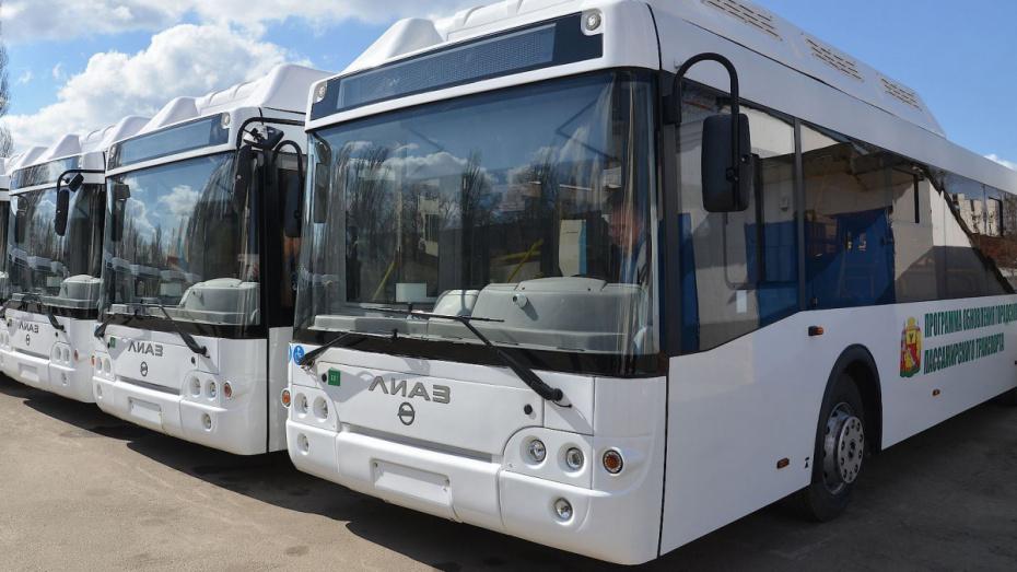 В Воронеже ради фестиваля «Город-сад» пустят дополнительные автобусы