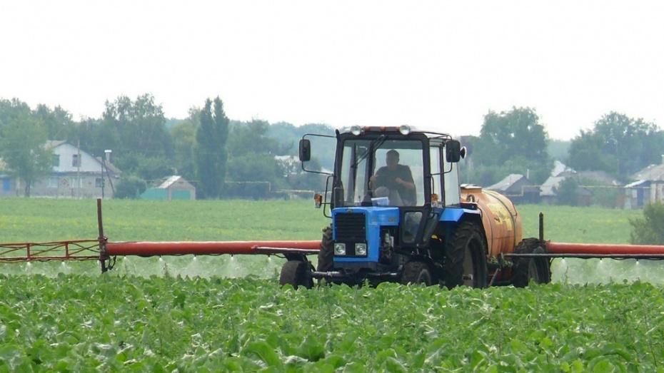 Аграрии Воронежской области выполнили план по посеву на 91%