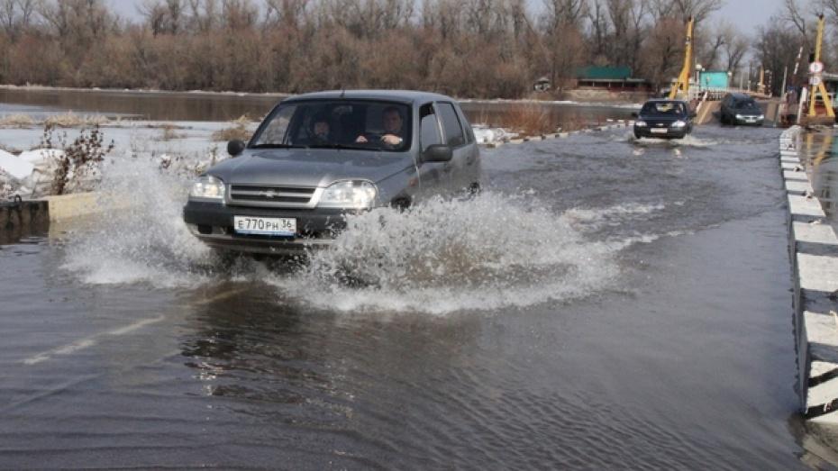 Несколько сел Богучарского района оказались изолированы разлившимся Доном