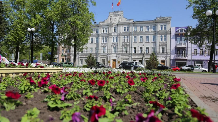 ВВоронеже увеличили площадь цветников на1 тысячу квадратных метров