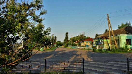 Огород на Красной площади. Чем живет воронежская улица, названная в честь символа России