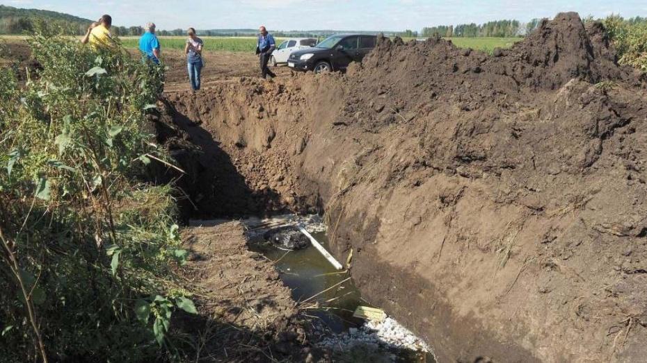 Воронежцы попросили президента спасти озеро Круглое от осушения