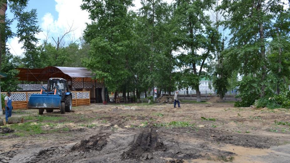 В Лисках построят сцену и проложат тропы здоровья в парке культуры и отдыха