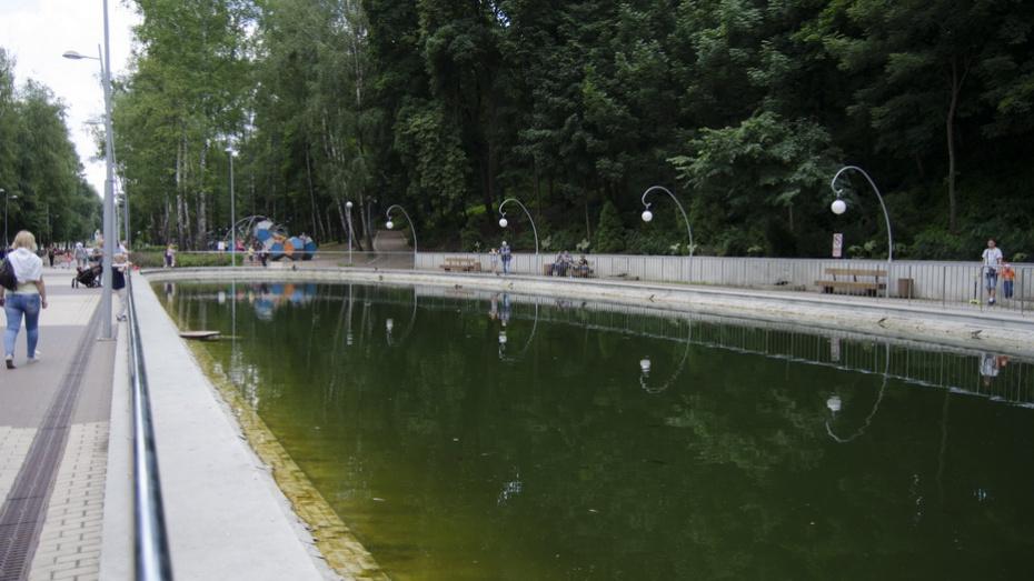 Ученые Воронежского опорного университета очистят водоемы Центрального парка