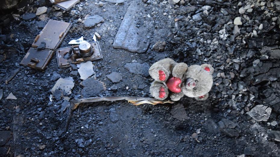 В Верхнехавском районе пострадавшая от пожара многодетная мать-одиночка попросила о помощи