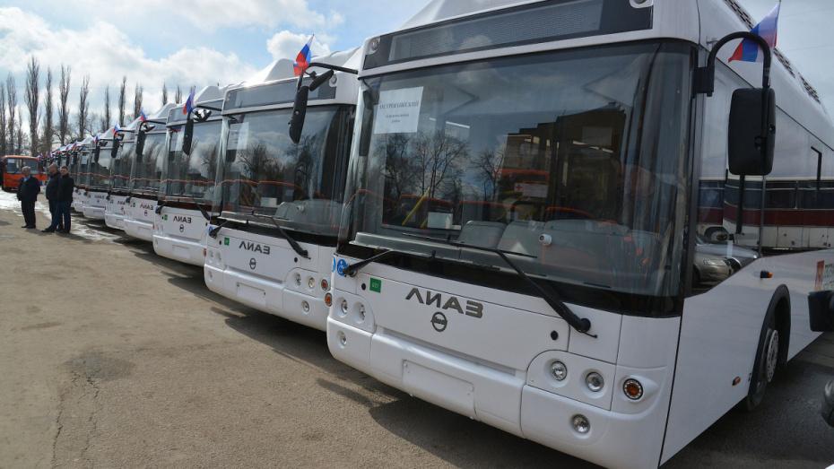 Между Воронежем и районами сократили количество автобусных маршрутов