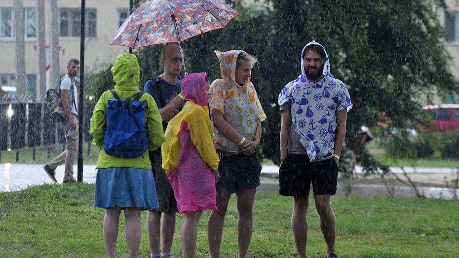 Метеорологи дали прогноз погоды на июнь в Воронежской области