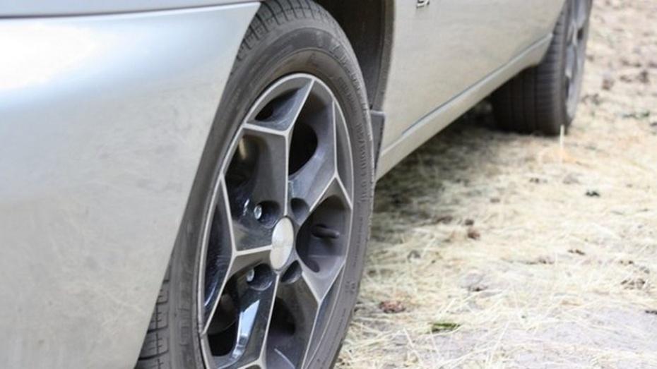 По вине водителей на воронежских дорогах за сутки погибли пять человек