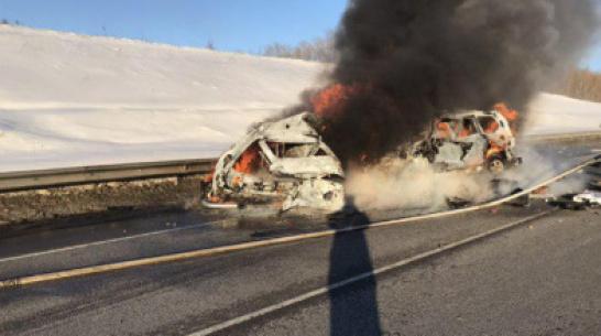В Воронежской области за ДТП с 8 жертвами будут судить погибшего водителя