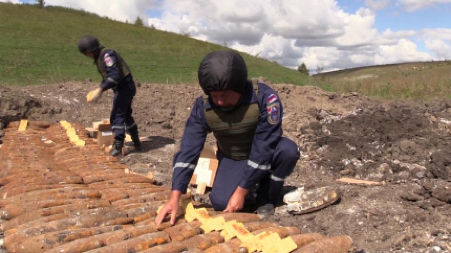 В Воронежской области уничтожили 118 боеприпасов времен войны