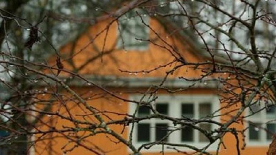 Россошанские полицейские задержали подозреваемых в совершении 20 дачных  краж