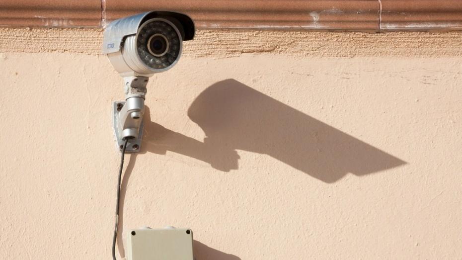 В Воронеже вора нашли по камерам видеонаблюдения
