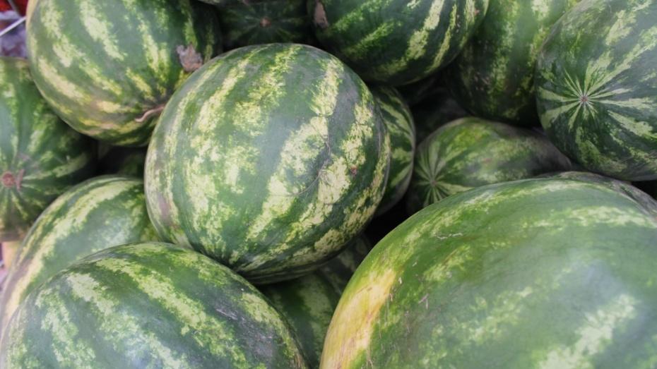 Жительница Хохольского района отравилась арбузом