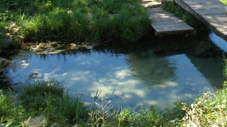 Санитарные мед. сотрудники проверили качество воды врасположенных вНовоусманском районе родниках