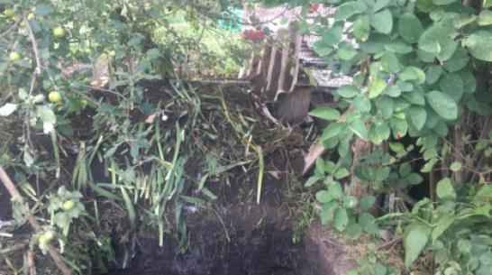 В Воронежской области вынесли приговор женщине, закопавшей труп мужа-тирана во дворе дома