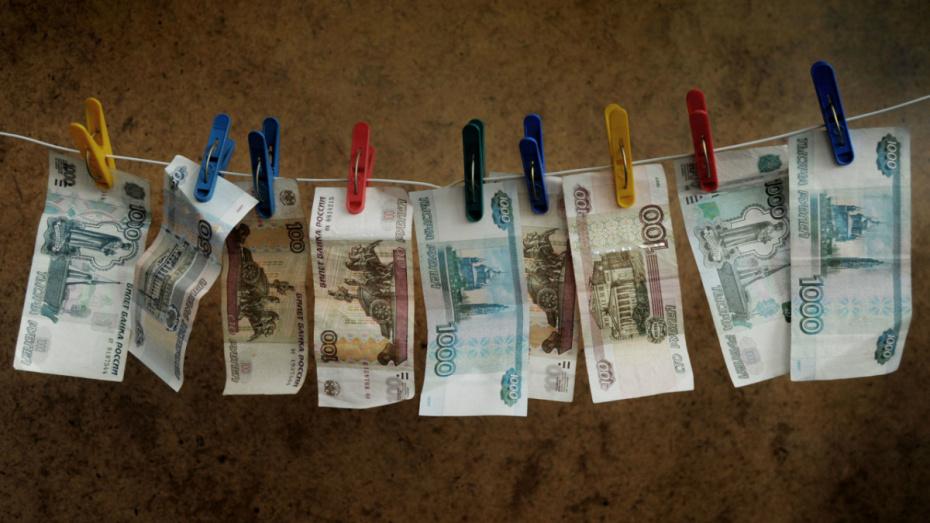 Средняя зарплата воронежцев выросла на 8% за год