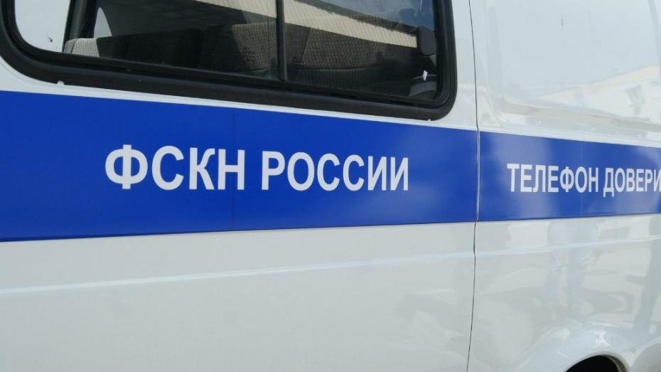 Кокаин Магазин Воронеж Грибы карточкой Хабаровск
