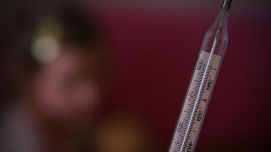 Инфекционная заболеваемость вВоронежской области увеличилась на97% загод