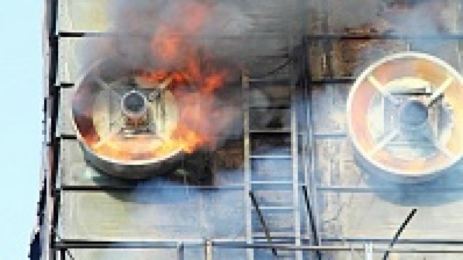 В панинском хозяйстве сгорело 60 тонн семян подсолнечника