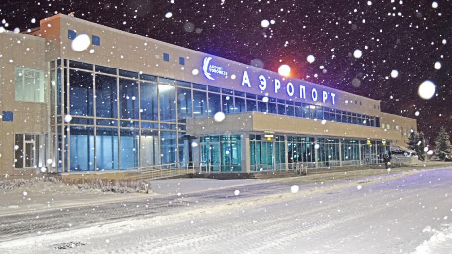 Воронежские общественники ответили на притязания Петербурга на имя Петра I для аэропорта